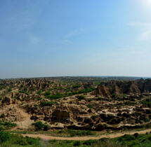 Yuwaraj_Landscape-07